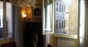 Apartment Via Guicciardini
